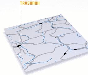 3d view of Trushniki