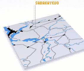 3d view of Sabakayevo