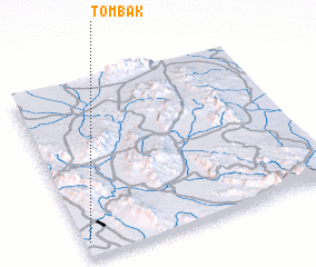 3d view of Tombak