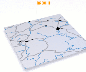 3d view of Naboki