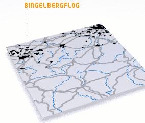 3d view of Bingelberg Flog