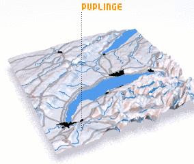 3d view of Puplinge