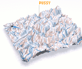 Pussy Map 47