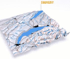 3d view of Savigny