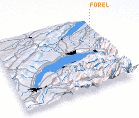 3d view of Forel