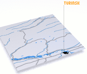 3d view of Turinsk