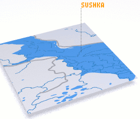3d view of Sushka