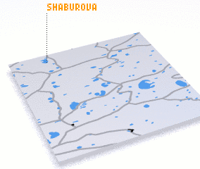 3d view of Shaburova