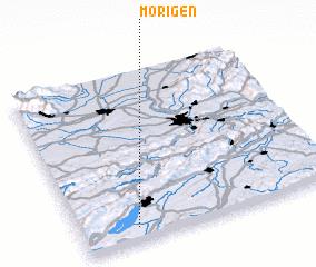 3d view of Mörigen