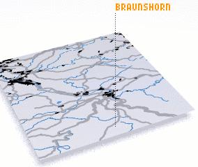 3d view of Braunshorn