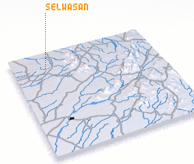 3d view of Selwāsan