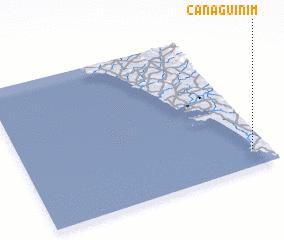 3d view of Canaguinim