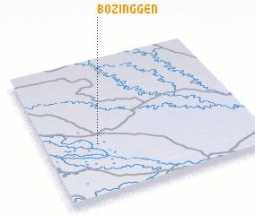 3d view of Bozinggen