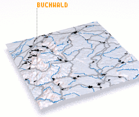 3d view of Buchwald