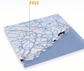 3d view of Foss