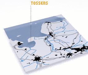 3d view of Tossens