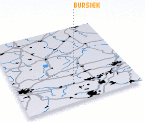 3d view of Bursiek