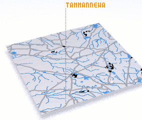 3d view of Tammannewa