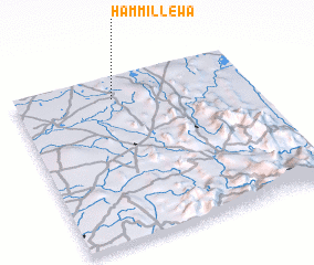 3d view of Hammillewa