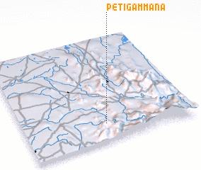 3d view of Petigammana