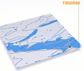 3d view of Tingunak