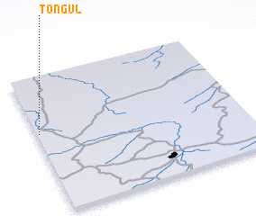 3d view of Tongul