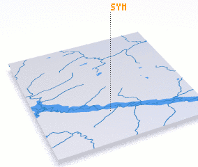 3d view of Sym