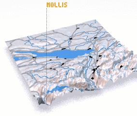 3d view of Mollis