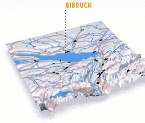3d view of Bibruck