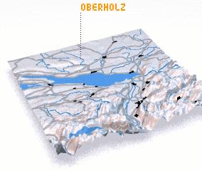 3d view of Oberholz