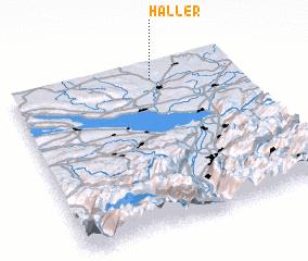 3d view of Haller