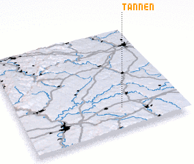 3d view of Tannen