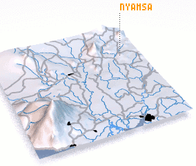 3d view of Nyamsa