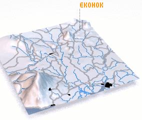 3d view of Ekohok