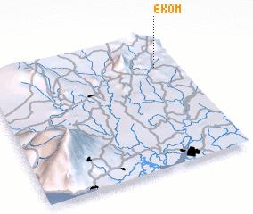 3d view of Ekom