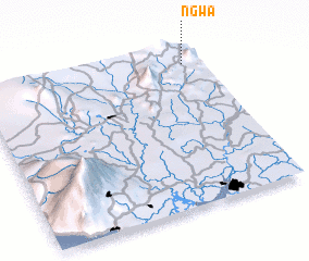 3d view of Ngwa