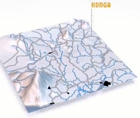 3d view of Konga
