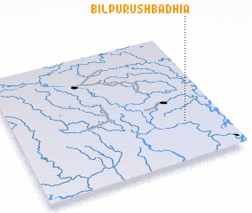 3d view of Bil Purushbadhia