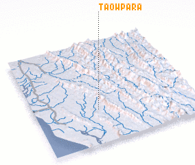 3d view of Taowpāra