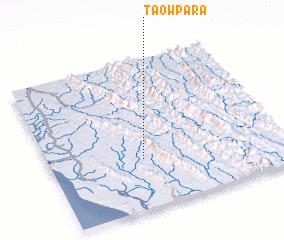 3d view of Taowpāra