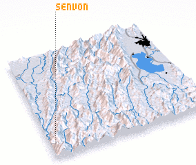 3d view of Senvon