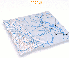 3d view of Padauk