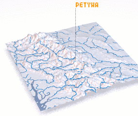 3d view of Petywa