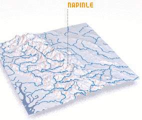 3d view of Napinle