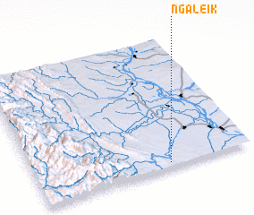 3d view of Ngaleik