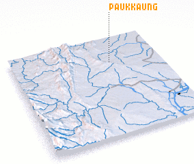 3d view of Paukkaung