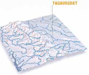 3d view of Tagaungnet