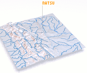 3d view of Natsu