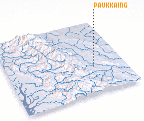 3d view of Paukkaing