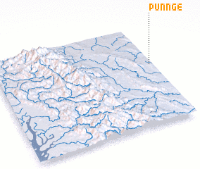 3d view of Punnge